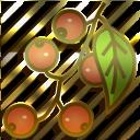Sušeno voće i šumski plodovi